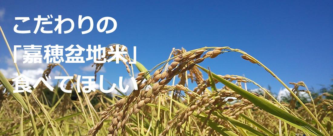 こだわりの「嘉穂盆地米」食べてほしい
